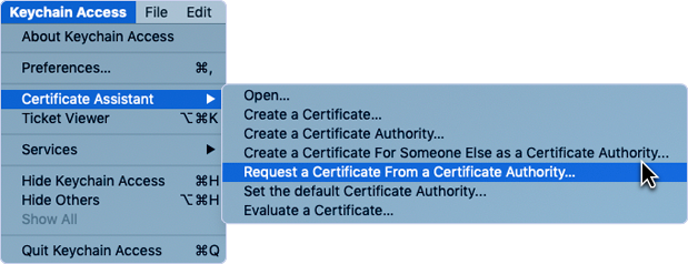 Selecting Request a Certificate From a Certificate Authority to open Certificate Information dialog.